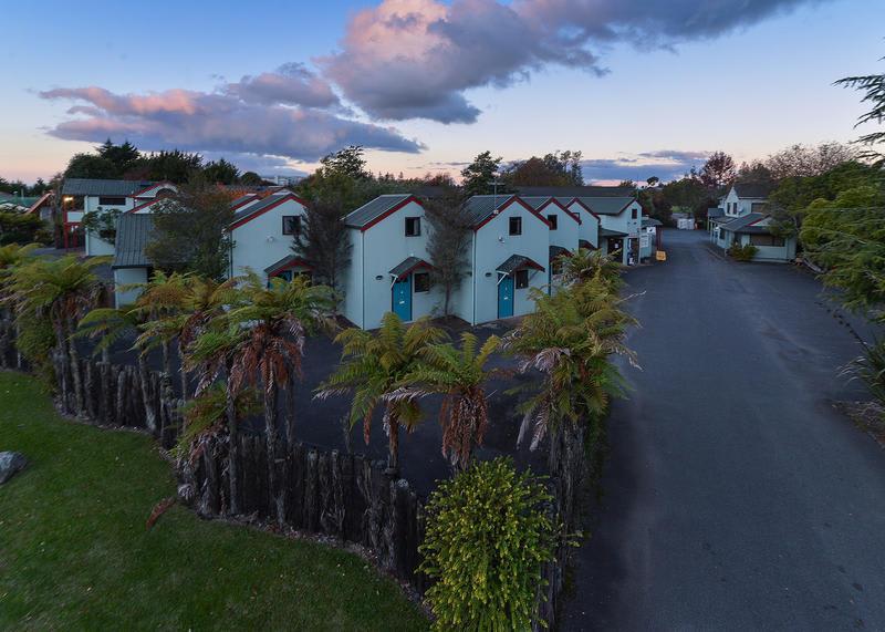 Kiwi paka - Rotorua