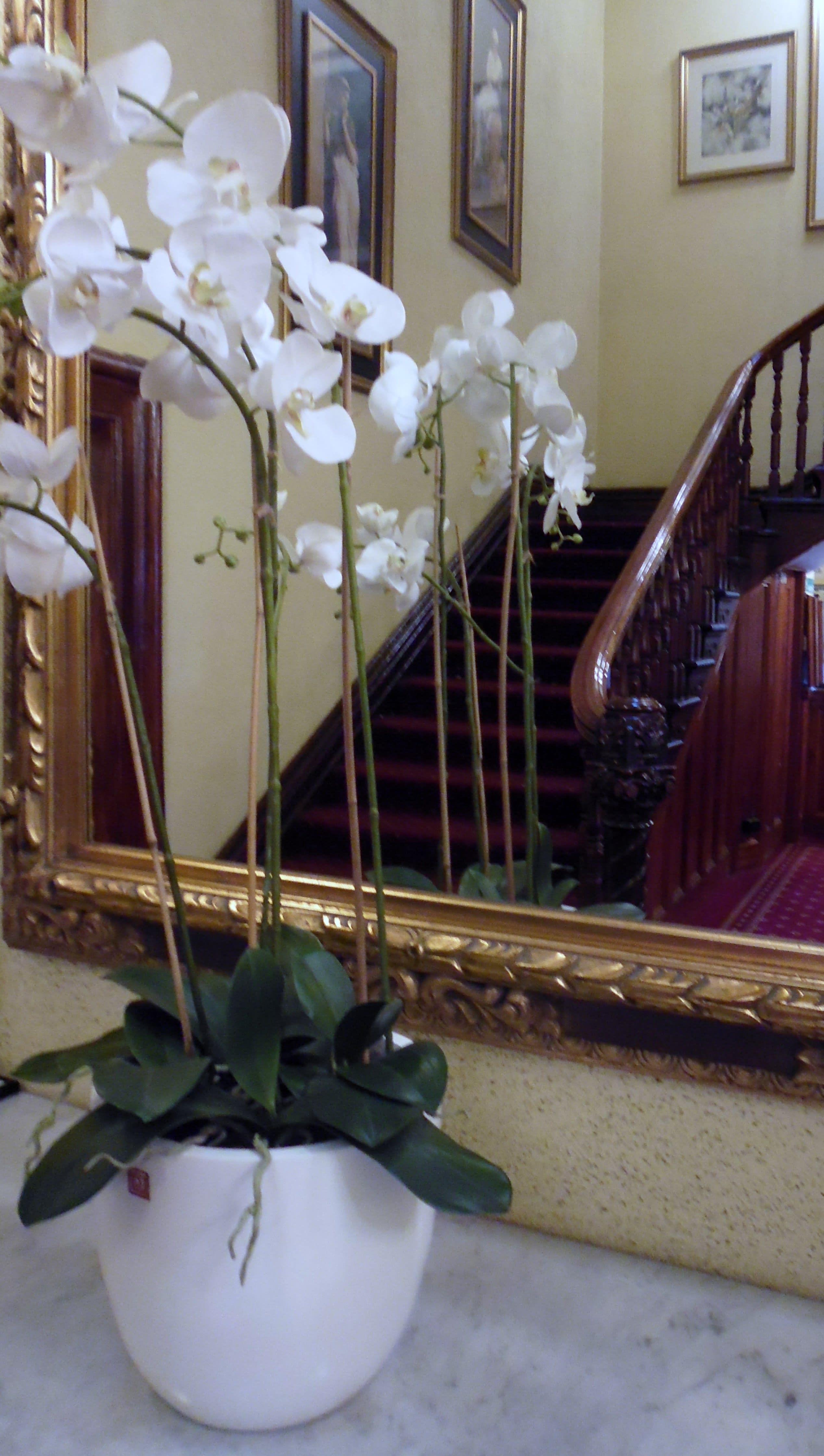 HOSTEL - Claremont Guesthouse