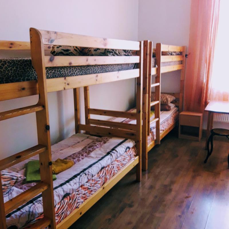 Tiger hostel