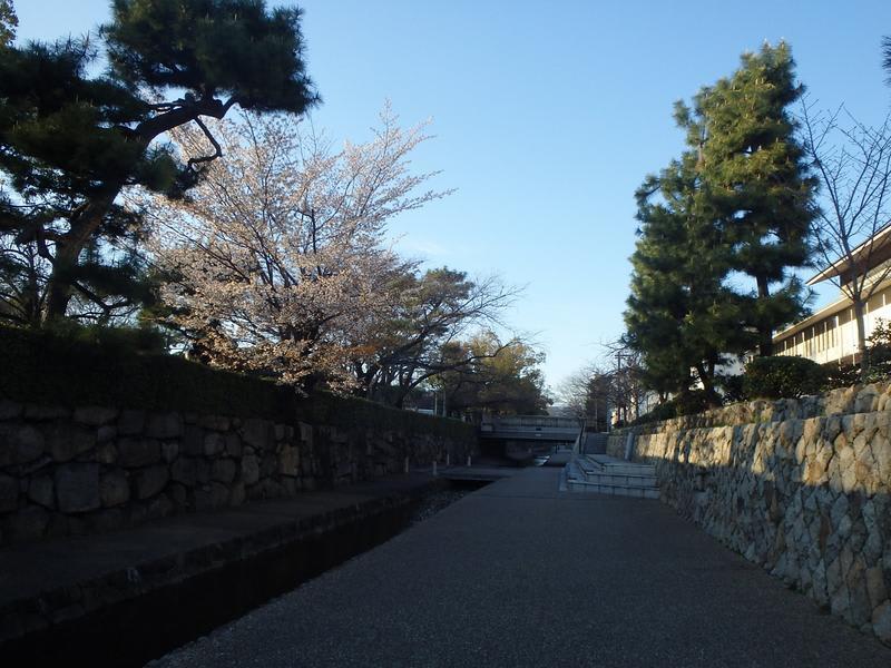HOSTEL - Tabetoma Nijo Castle