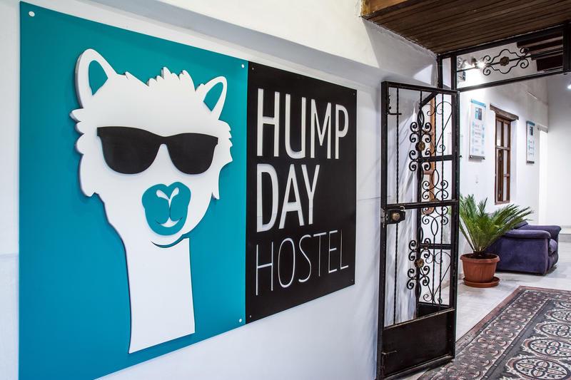 HOSTEL - Hump Day Hostel