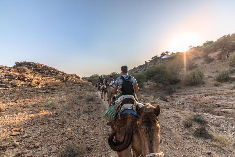 Backpacker Panda Oasis Jaisalmer