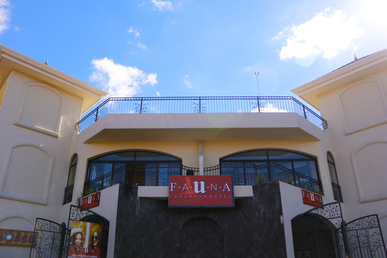 HOSTEL - Fauna Luxury Hostel