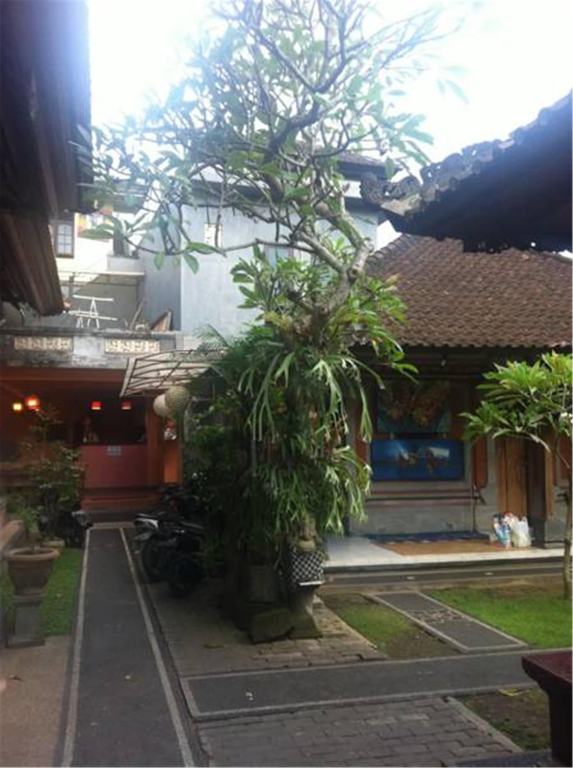 HOSTEL - Aru House