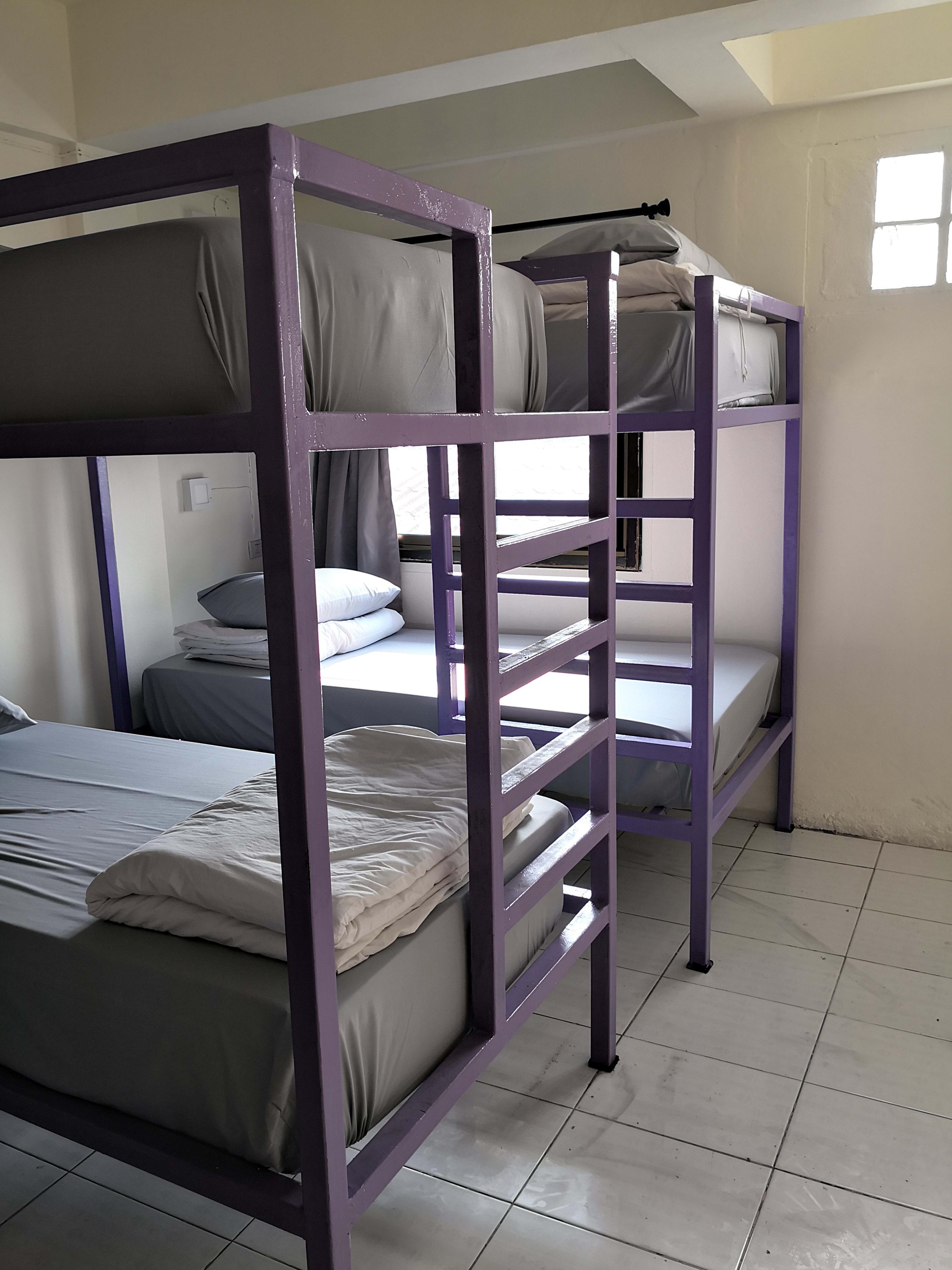 HOSTEL - Purple Monkey Backpackers