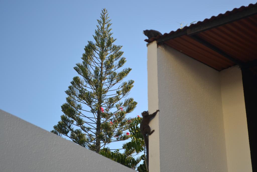 HOSTEL - Villa Praiana
