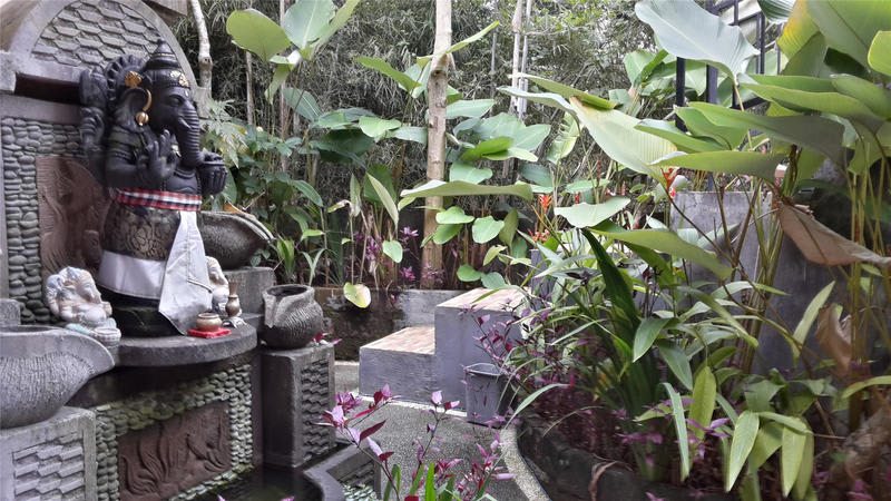 HOSTEL - Green View Backpackers inn
