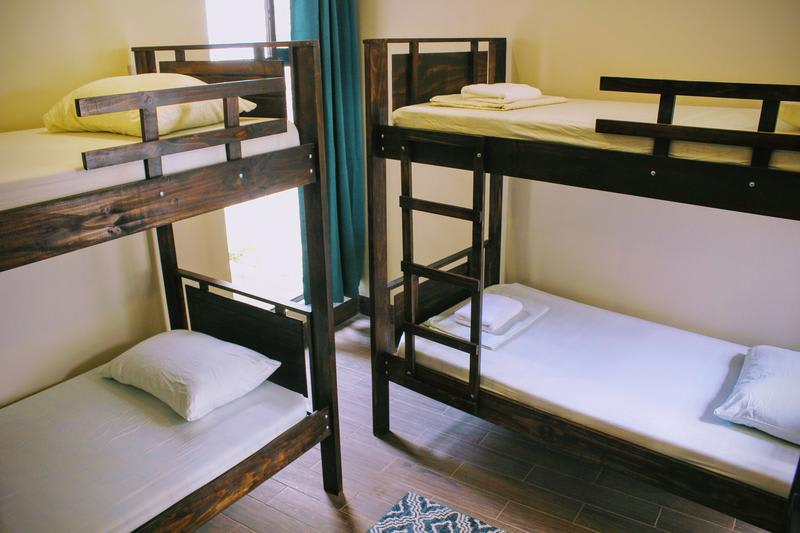 HOSTEL - Stray Cat Hostel