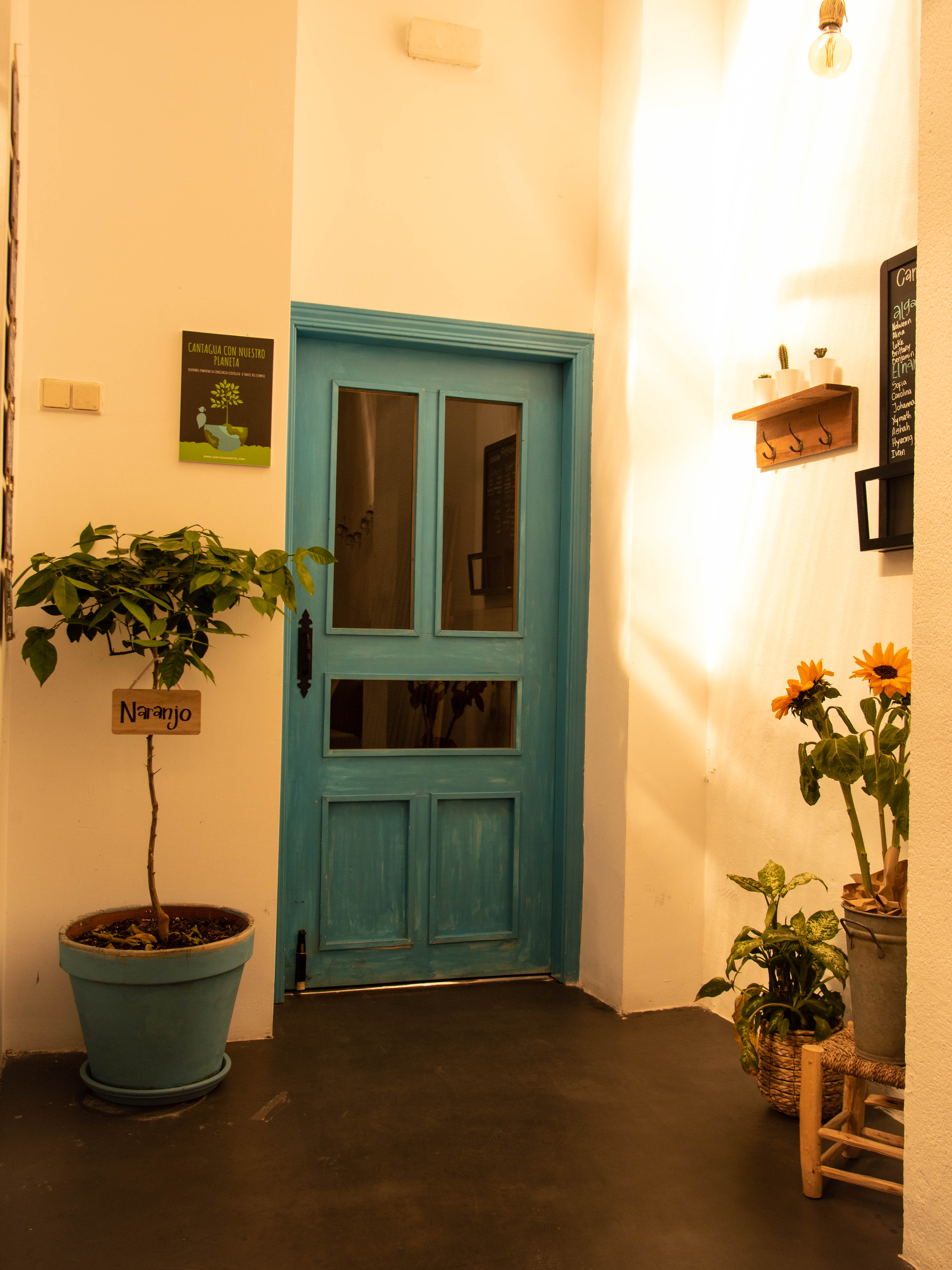 HOSTEL - Cantagua Hostel