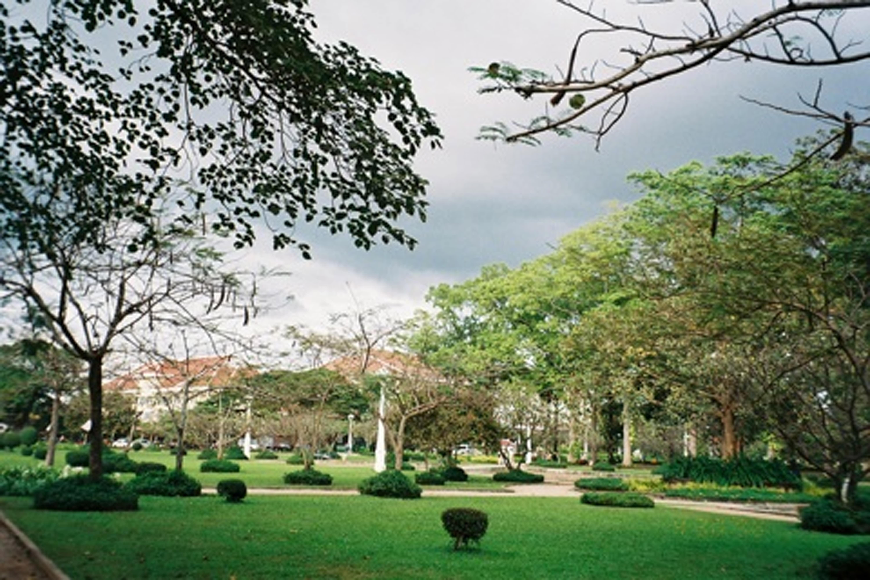 HOSTEL - Noni Tree Hostel