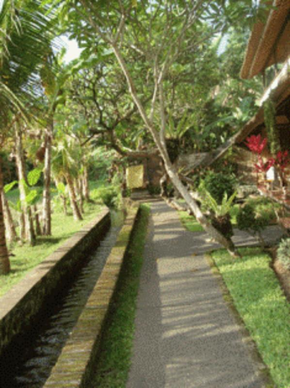 HOSTEL - Jati Home Stay and Gallery