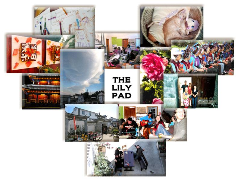 The Lily Pad