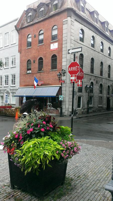 HOSTEL - The Alternative Hostel of Old Montreal