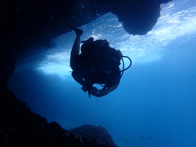 HOSTEL - Rumblefish Adventure