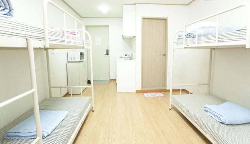 Twin Rabbit Hostel in HongDae