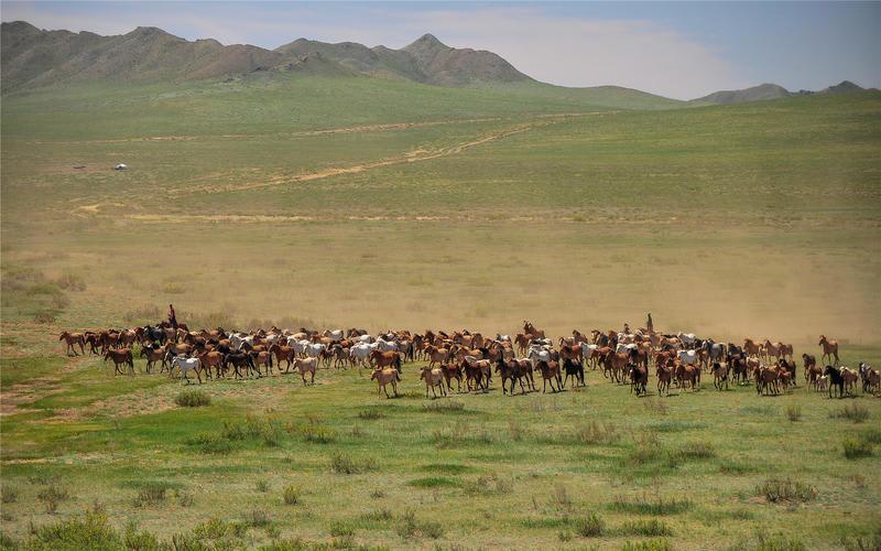 HOSTEL - Sunpath Mongolia