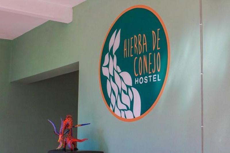 Hierba de Conejo Hostel
