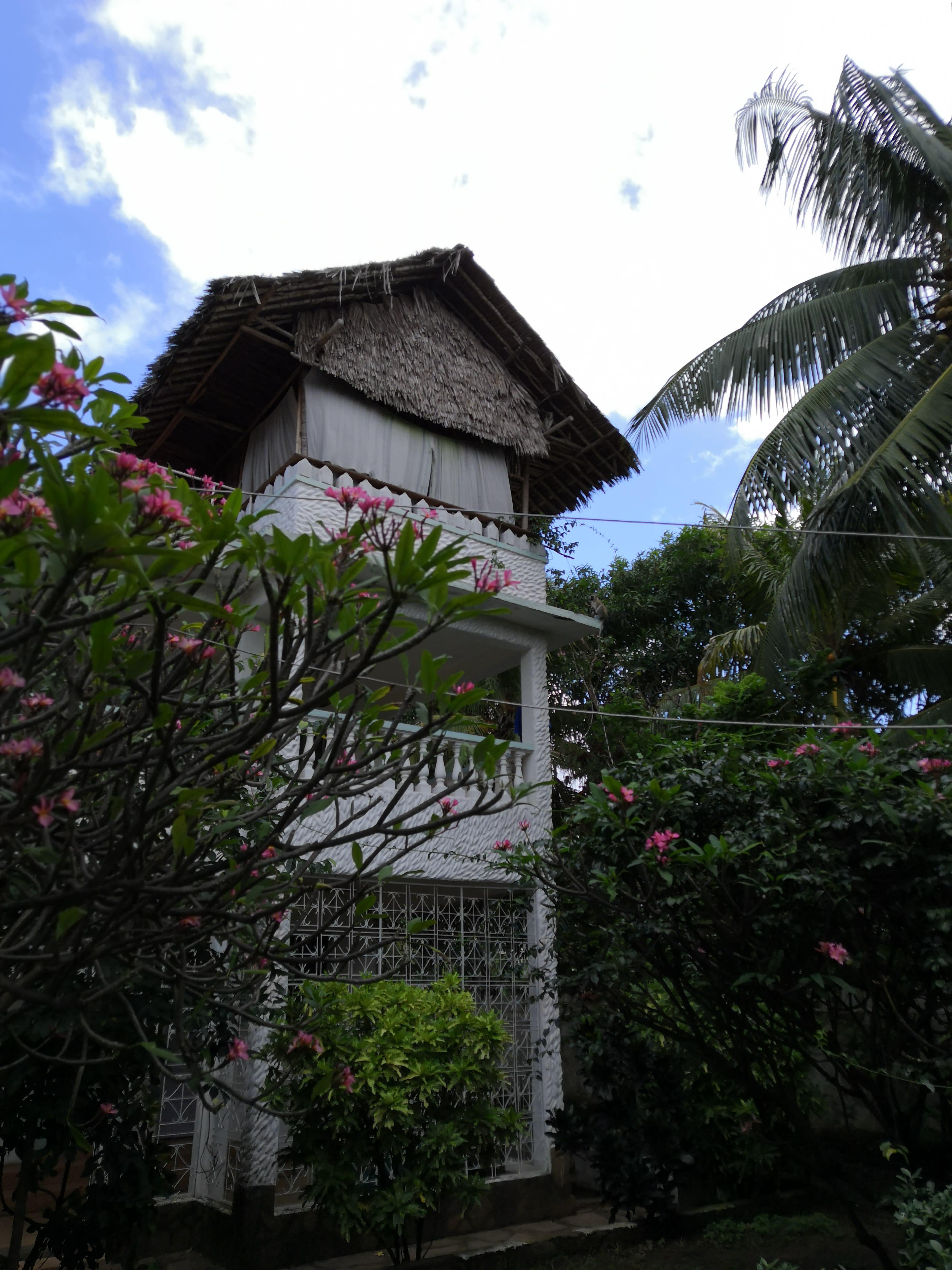 Tulia House and Camp