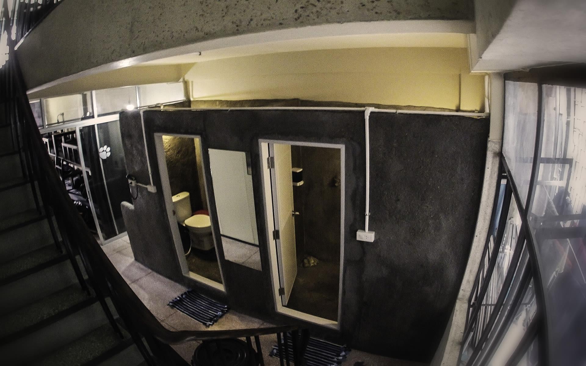 HOSTEL - Born Free Hostel – Vista
