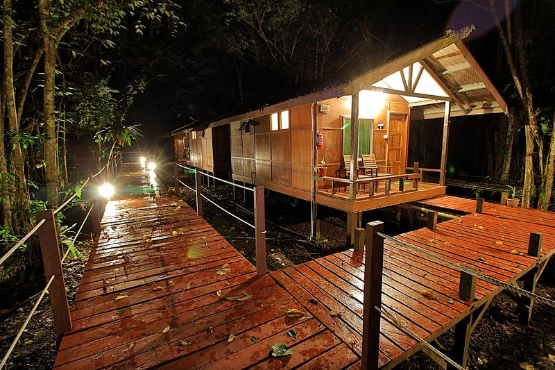 Nature Lodge Kinabatangan