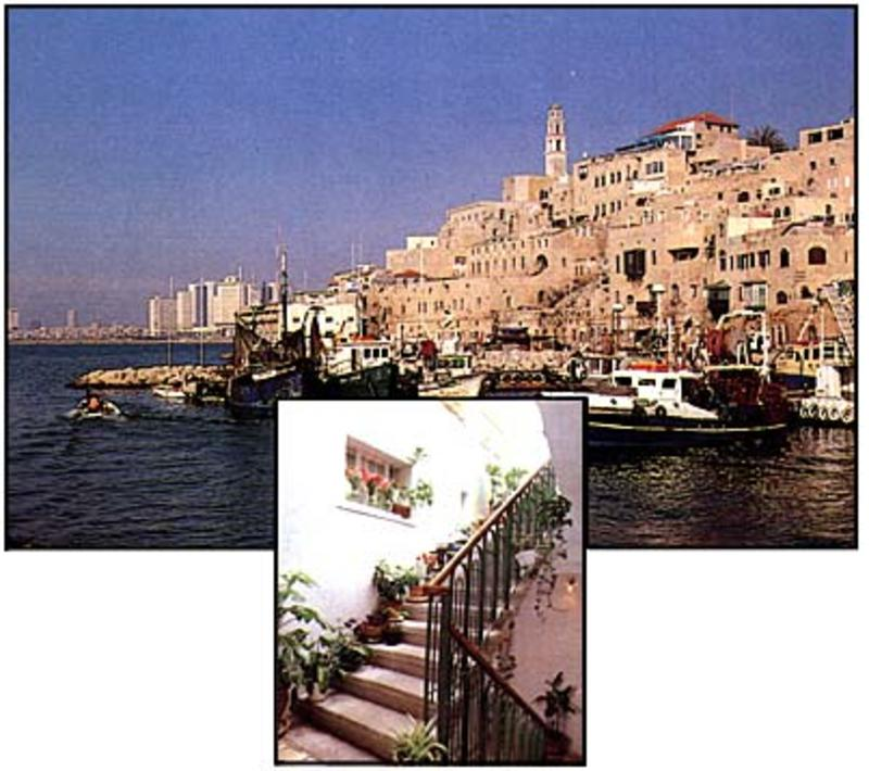 Old Jaffa Hostel