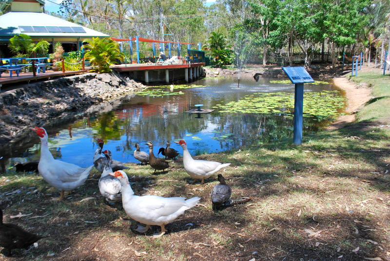 YHA Colonial village & Camping & Tours