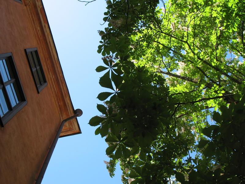 HOSTEL - Castanea Old Town Hostel