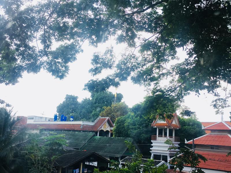Panda House Chiangmai