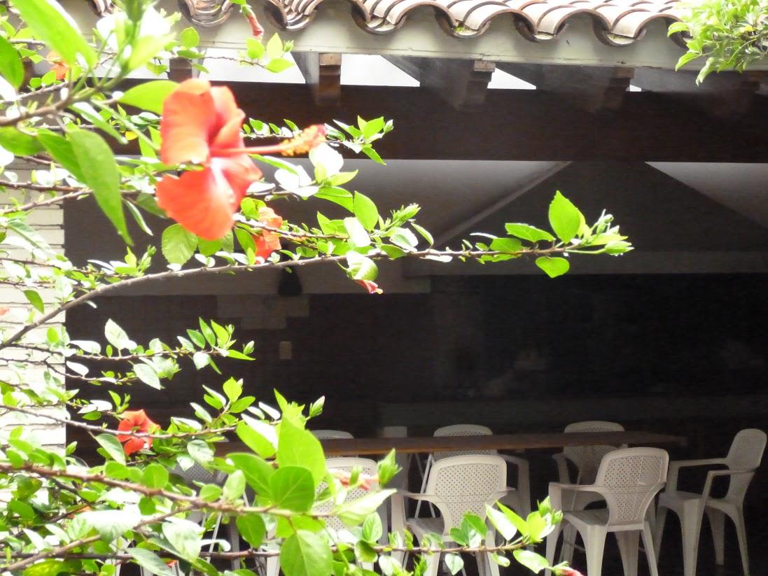 De Los Artistas Hostel Mendoza