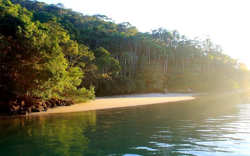 Mamangua Beach Hostel