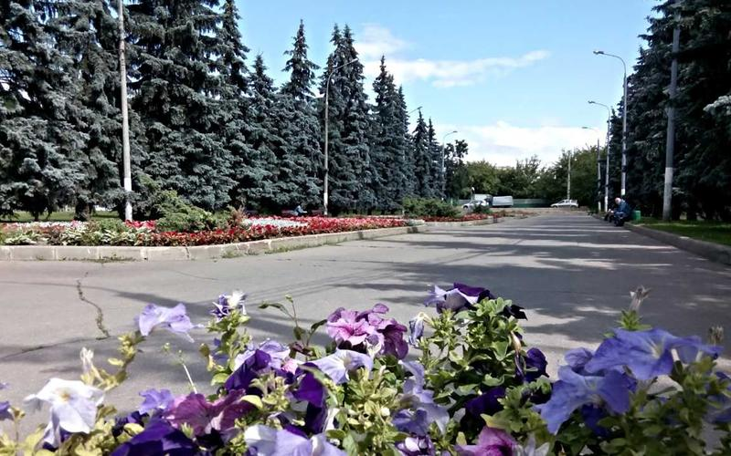 Novyi Gorod