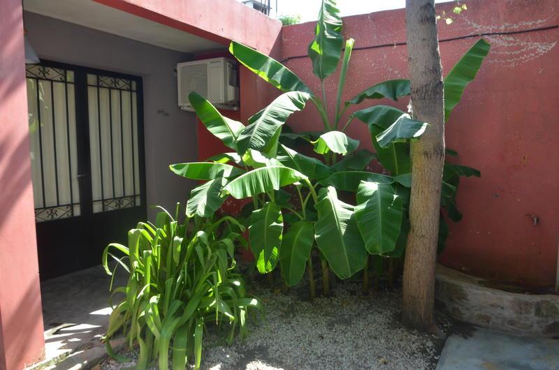 Los Girasoles Hostel