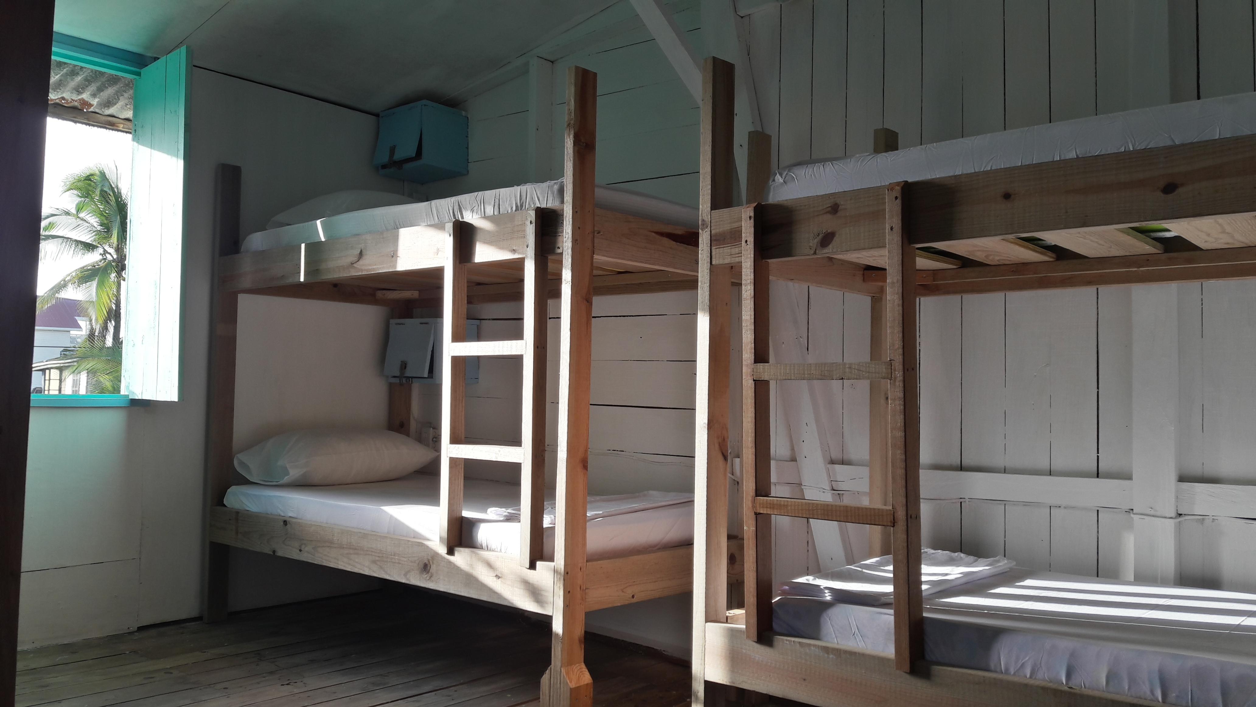 Twin Fin Hostels