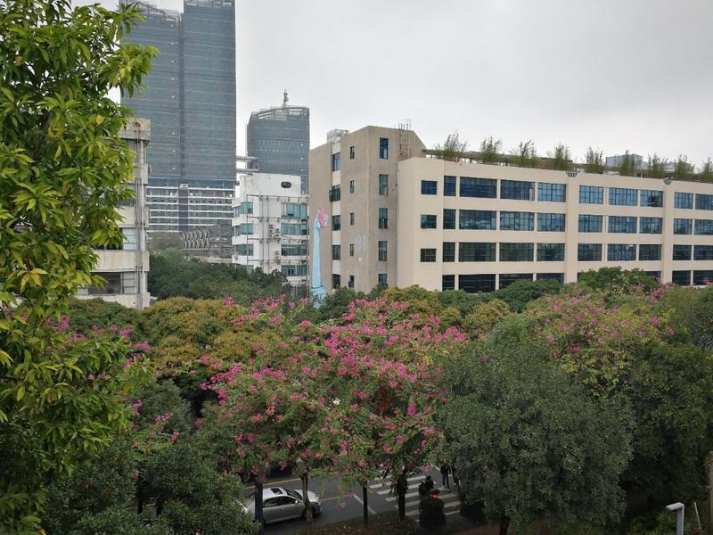 Shenzhen LOFT Youth Hostel