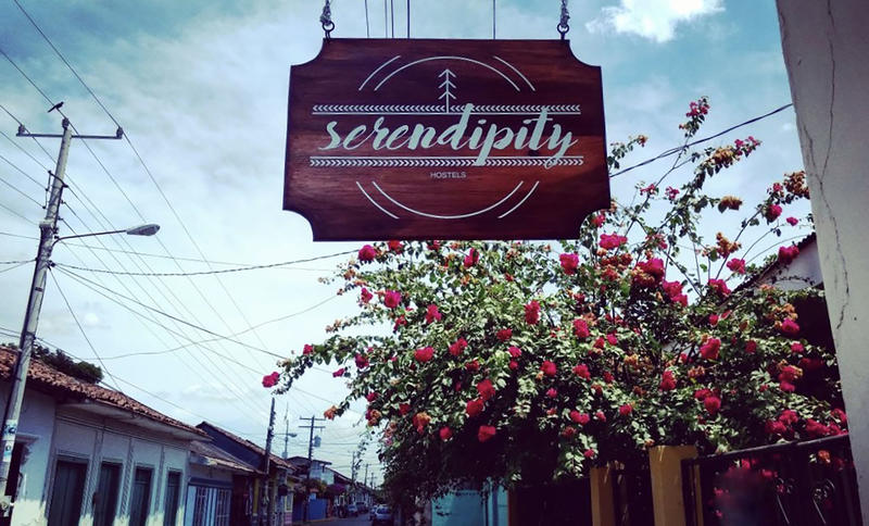 Serendipity Hostel