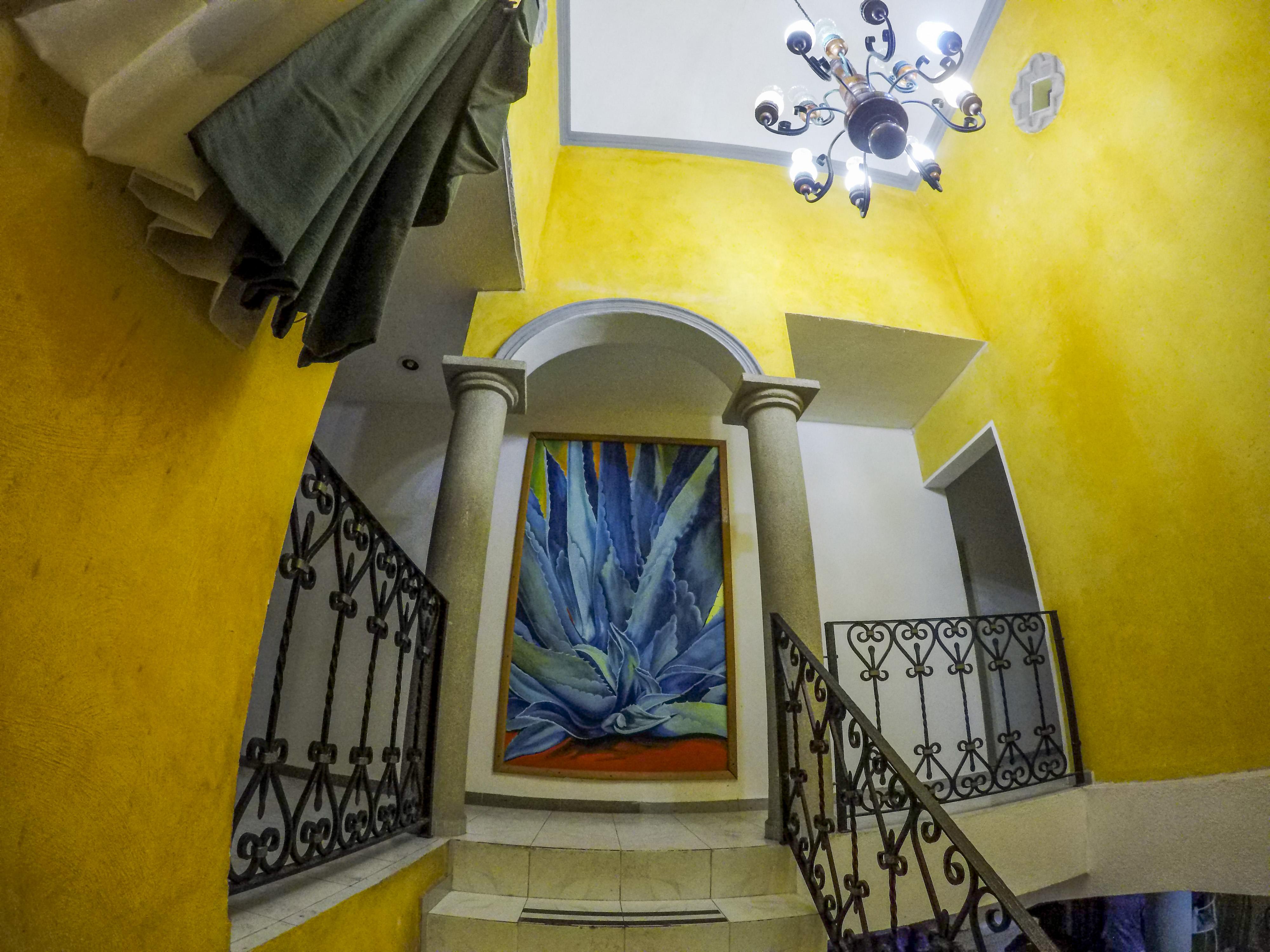 Agavero Hostel