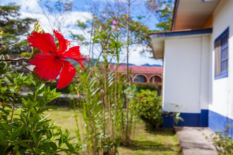 Hostal Garden by Refugio del Rio