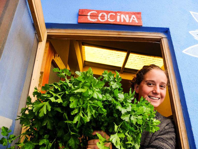 Eco Hostal Joshua Vegetarian Restaurant