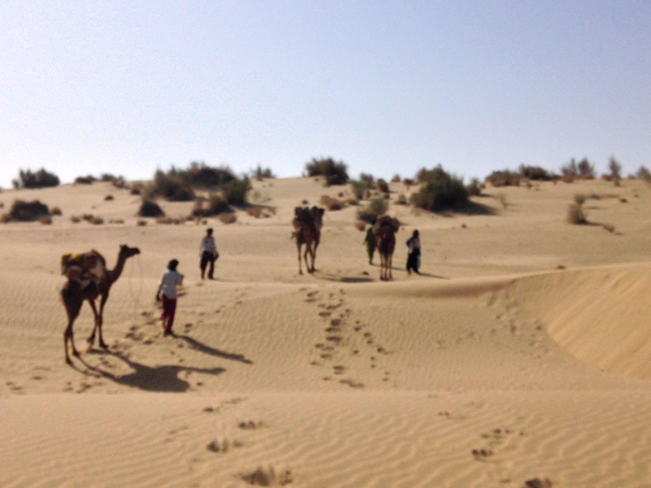Crazy Camel Guest House