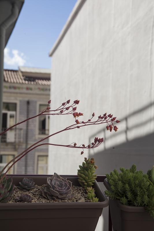 HOSTEL - Lisbon Poets Hostel
