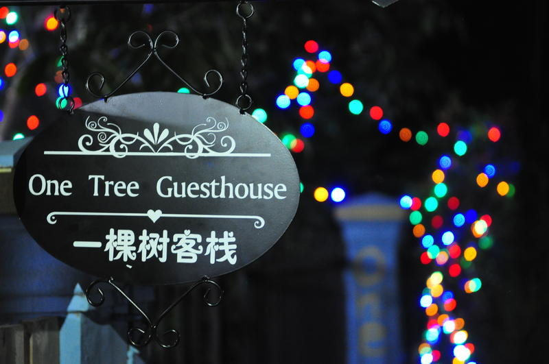 HOSTEL - One Tree Guesthouse