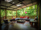 The Green Jungle House