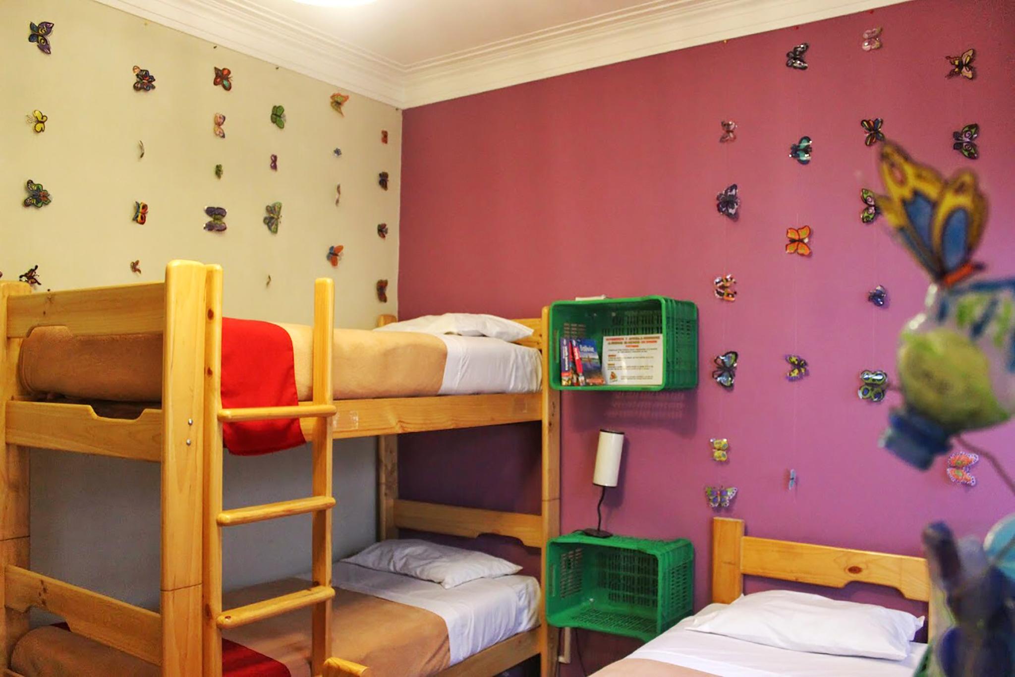 Red Llama Eco Hostel