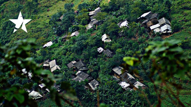 Jungleman Hostel