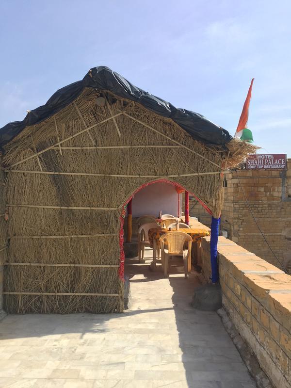 Desert Cow Jaisalmer