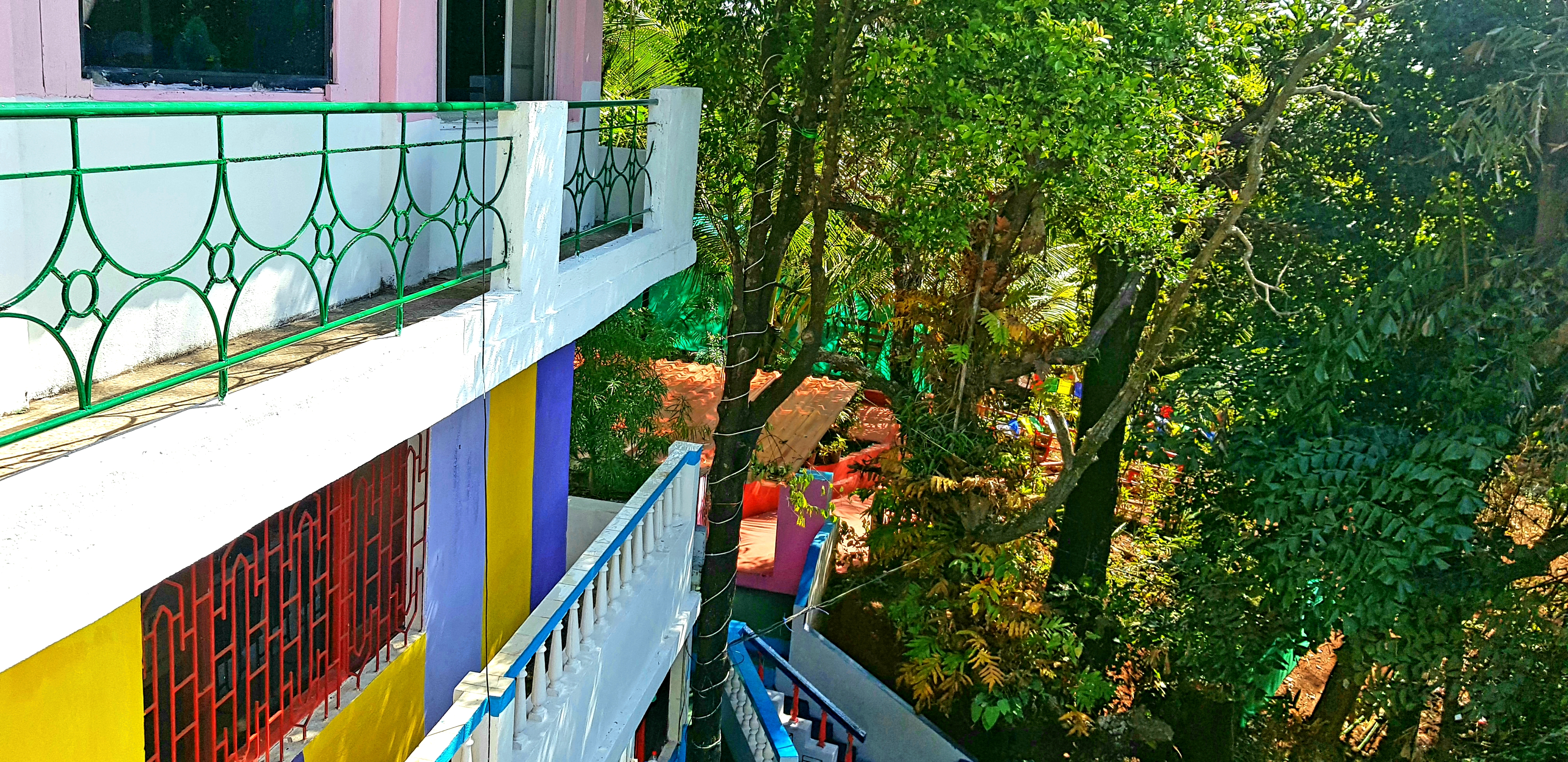 The Jungle Hostel