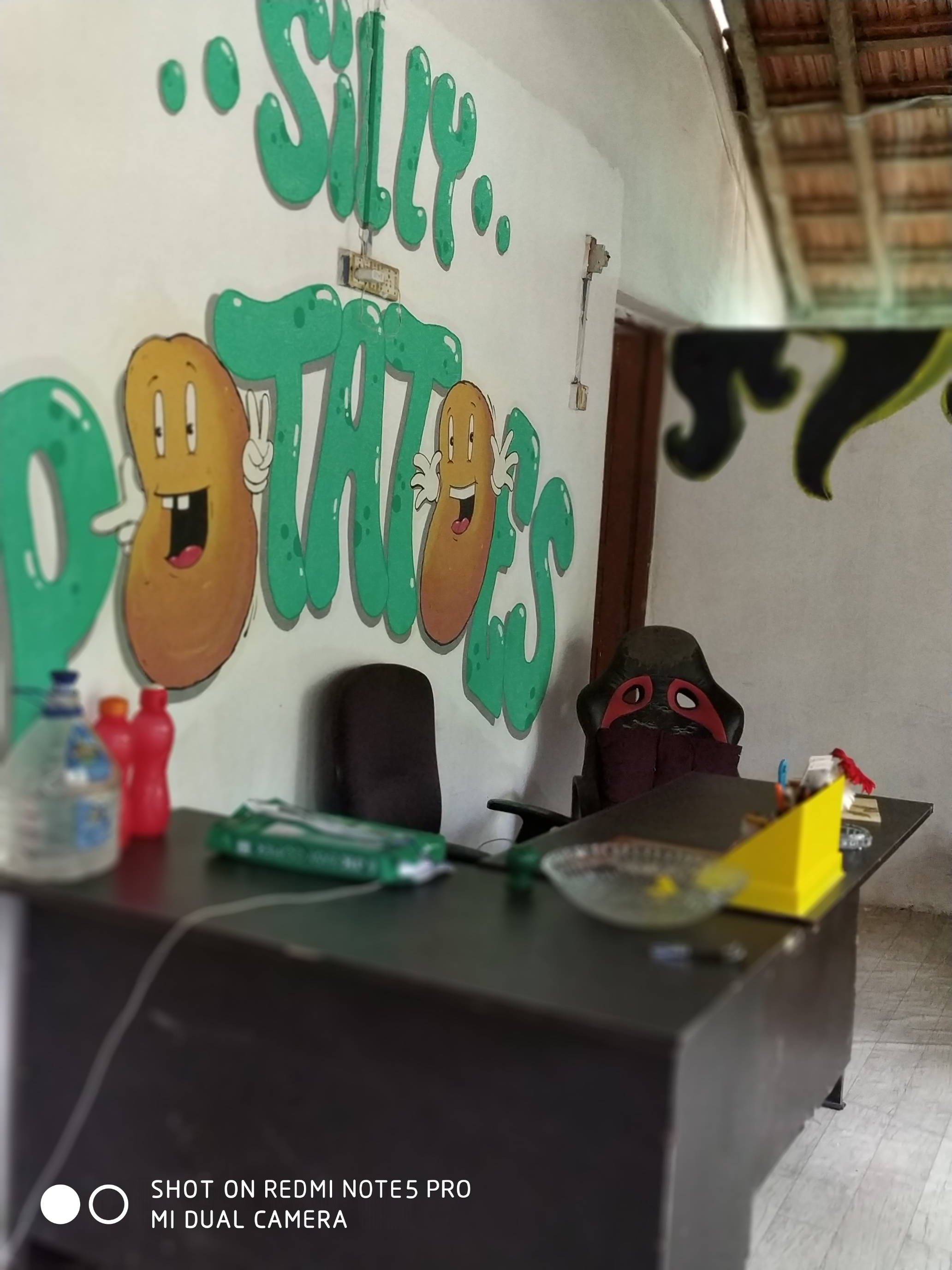 Silly Potatoes Hostel