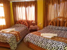 Cozy Hostel Puno
