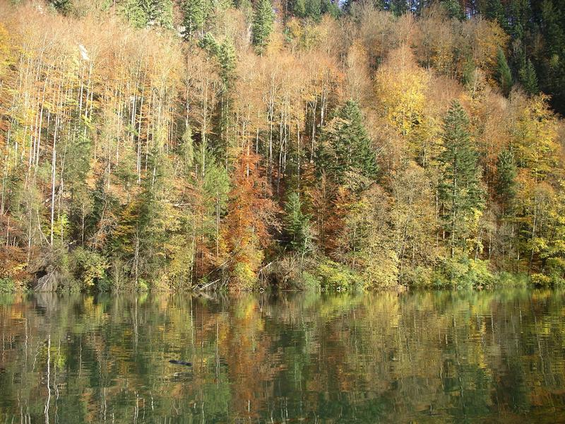 Lago Lodge