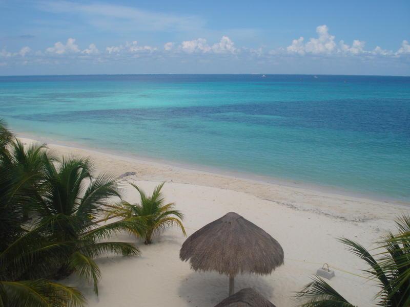Beachouse Dive Hostel Cozumel